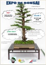 expo bonsai2018